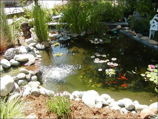 2007 garden tour for Artificial pond in garden